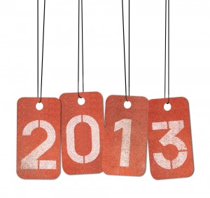 Goals 2013