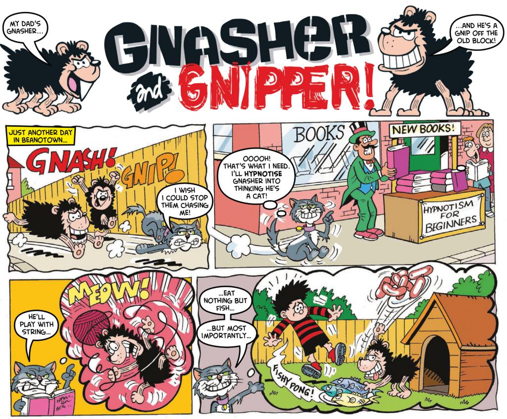 Gnasher-hynocat